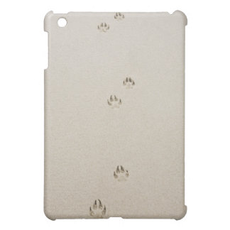 USA, Massachusetts, dog's track on sand iPad Mini Cover