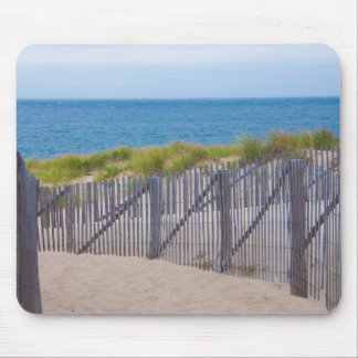 USA, Massachusetts. Dunes And Path Mouse Pad