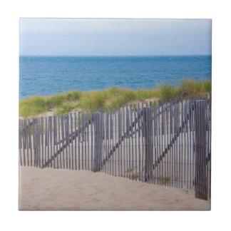 USA, Massachusetts. Dunes And Path Tile