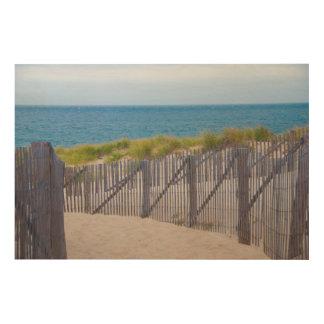 USA, Massachusetts. Dunes And Path Wood Print