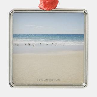 USA, Massachusetts, Empty beach 3 Christmas Ornament
