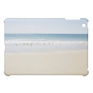 USA, Massachusetts, Empty beach 3 iPad Mini Covers