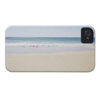USA, Massachusetts, Empty beach 3 iPhone 4 Cases