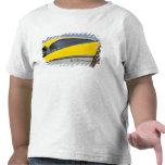 USA, Massachusetts, Gloucester. Detail of 1957 T-shirts