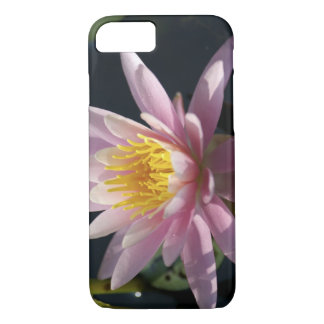 USA, Massachusetts, Great Barrington, lily pad iPhone 8/7 Case