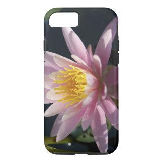 USA, Massachusetts, Great Barrington, lily pad iPhone 8/7 Case