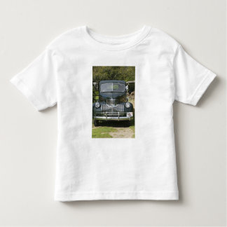 USA, MASSACHUSETTS, Martha's Vineyard: West 4 Toddler T-Shirt