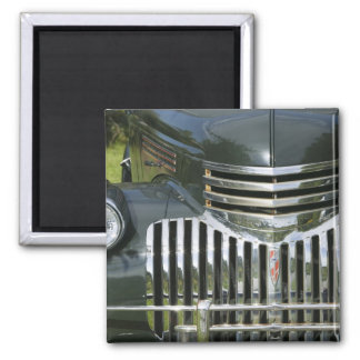 USA, MASSACHUSETTS, Martha's Vineyard: West Square Magnet