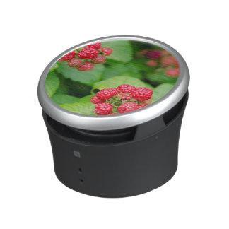 USA, Massachusetts, Nantucket. Ripe Raspberries Bluetooth Speaker