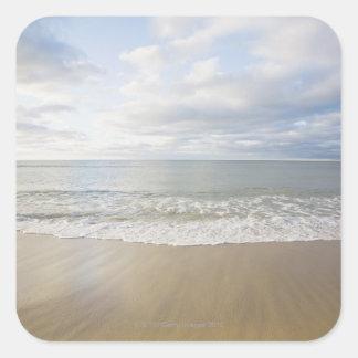 USA, Massachusetts, seascape Square Sticker