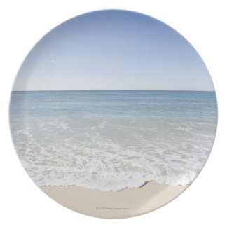 USA, Massachusetts, Waves at sandy beach Plate
