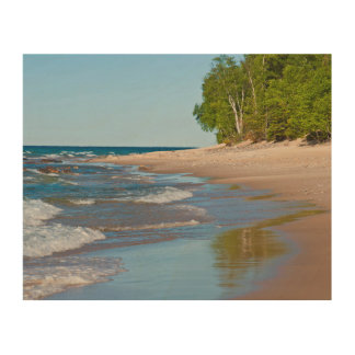 USA, Michigan. 12 Mile Beach Wood Prints