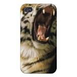 USA, Michigan, Detroit. Detroit Zoo, tiger 2 Covers For iPhone 4