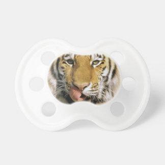 USA, Michigan, Detroit. Detroit Zoo, tiger Baby Pacifier