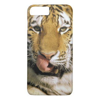 USA, Michigan, Detroit. Detroit Zoo, tiger iPhone 8 Plus/7 Plus Case