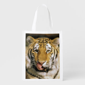 USA, Michigan, Detroit. Detroit Zoo, tiger Reusable Grocery Bag