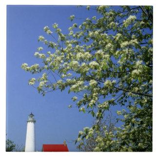 USA, Michigan, East Tawas. Tawas Lighthouse with Tile