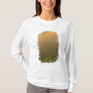 USA, Michigan, Meadow of goldenrod plants T-Shirt