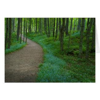 USA, Michigan. Miner's Falls Trail Card