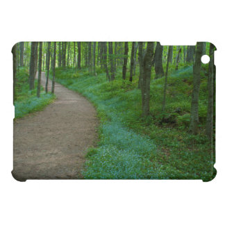 USA, Michigan. Miner's Falls Trail Case For The iPad Mini