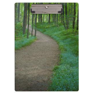 USA, Michigan. Miner's Falls Trail Clipboard