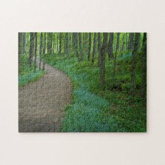 USA, Michigan. Miner's Falls Trail Jigsaw Puzzle