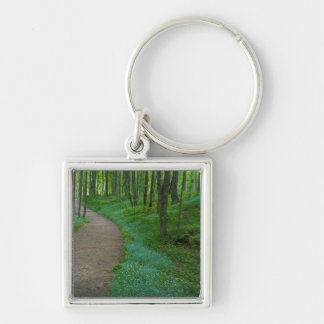 USA, Michigan. Miner's Falls Trail Key Ring