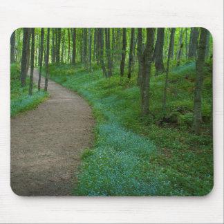 USA, Michigan. Miner's Falls Trail Mouse Pad
