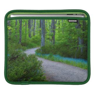 USA, Michigan. Path Thru The Woods iPad Sleeve