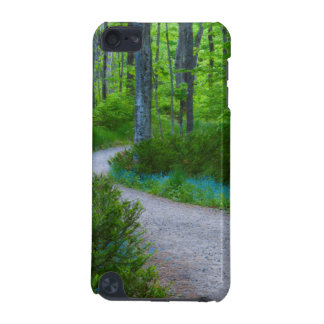 USA, Michigan. Path Thru The Woods iPod Touch 5G Cases