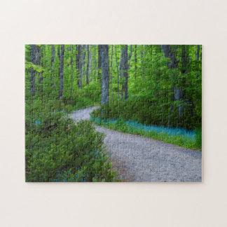 USA, Michigan. Path Thru The Woods Jigsaw Puzzle