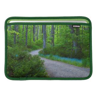 USA, Michigan. Path Thru The Woods MacBook Sleeve