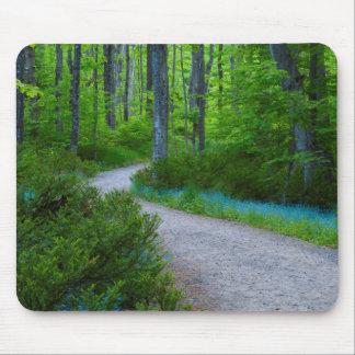 USA, Michigan. Path Thru The Woods Mouse Mat