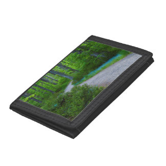 USA, Michigan. Path Thru The Woods Trifold Wallet