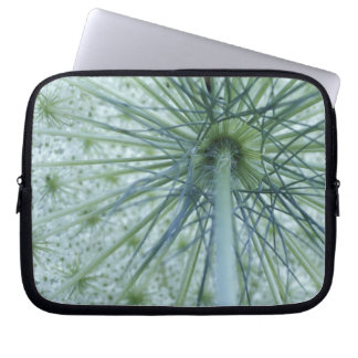 USA, Michigan. Queen-Anne's Lace viewed from Laptop Sleeve