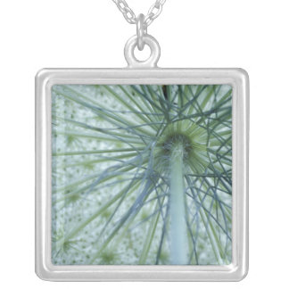 USA, Michigan. Queen-Anne's Lace viewed from Square Pendant Necklace