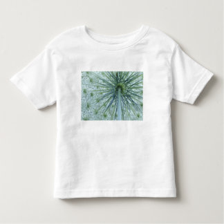 USA, Michigan. Queen-Anne's Lace viewed from Toddler T-Shirt