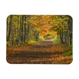USA, Michigan, Upper Peninsula. Roadway into Rectangle Magnet