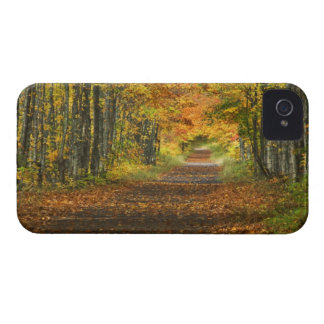 USA, Michigan, Upper Peninsula. Roadway into iPhone 4 Covers