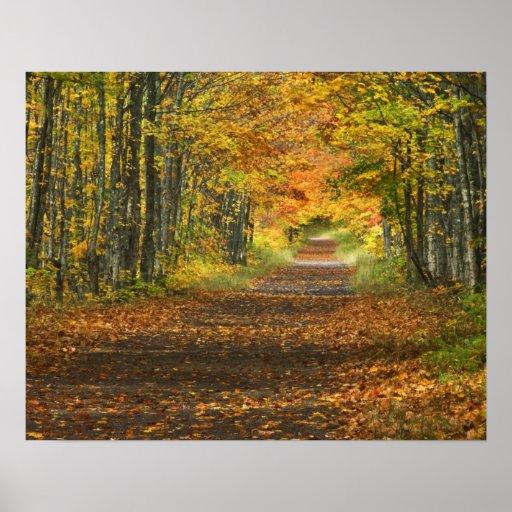 USA, Michigan, Upper Peninsula. Roadway into Posters