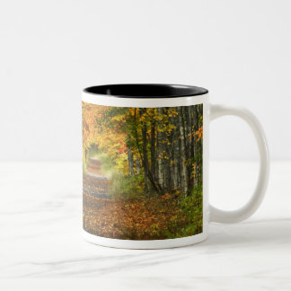 USA, Michigan, Upper Peninsula. Roadway into Two-Tone Coffee Mug