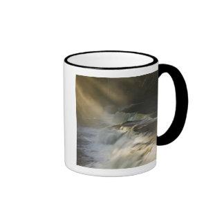 USA, Michigan, Upper Peninsula. Sunbeams on Coffee Mugs