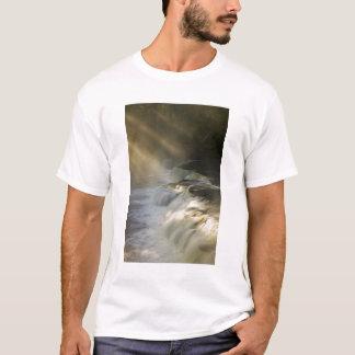 USA, Michigan, Upper Peninsula. Sunbeams on T-Shirt