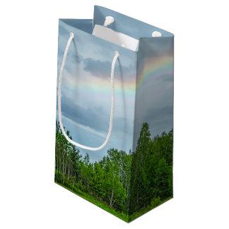 USA, Minnesota. Green meadow with wildflowers Small Gift Bag