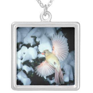 USA, Minnesota, Mendota Heights, Female Cardinal Silver Plated Necklace