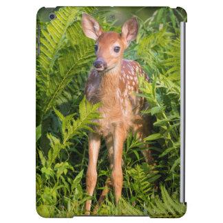 USA, Minnesota, Sandstone, Minnesota Wildlife 10 Cover For iPad Air