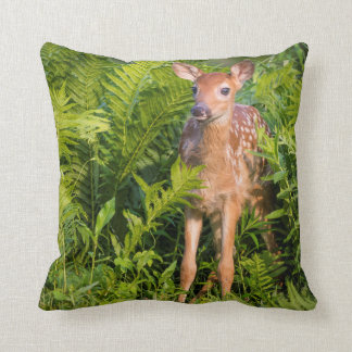 USA, Minnesota, Sandstone, Minnesota Wildlife 10 Cushion