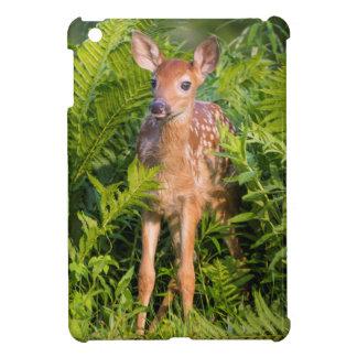 USA, Minnesota, Sandstone, Minnesota Wildlife 10 iPad Mini Case