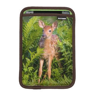 USA, Minnesota, Sandstone, Minnesota Wildlife 10 iPad Mini Sleeve
