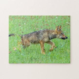 USA, Minnesota, Sandstone, Minnesota Wildlife 10 Jigsaw Puzzle